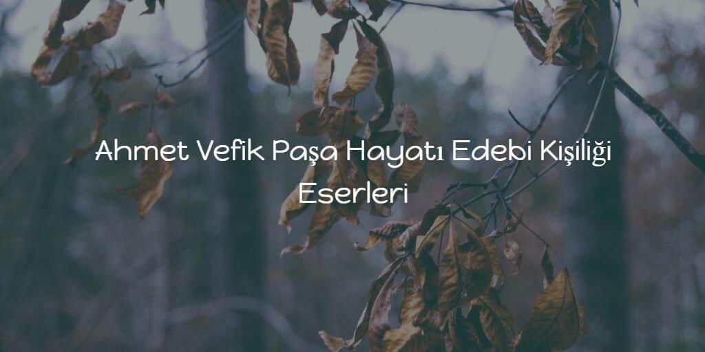 Ahmet Vefik Paşa Hayatı Edebi Kişiliği Eserleri