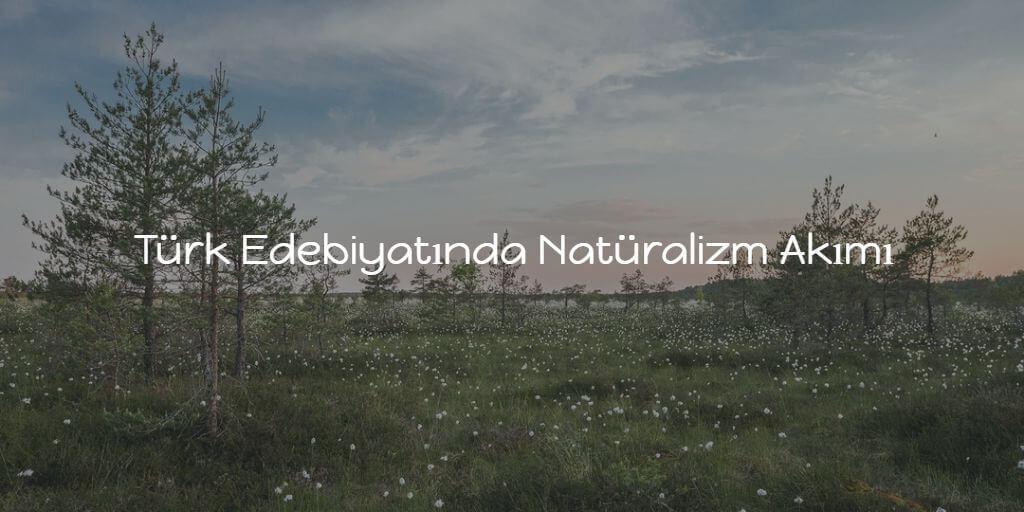 Türk Edebiyatında Natüralizm Akımı